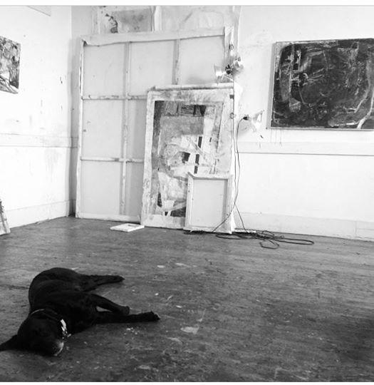 Aida Dog & Art Studio